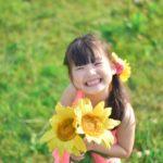 昭和記念公園のひまわり2018開花状況や見頃いつ?駐車場の開場時間は?
